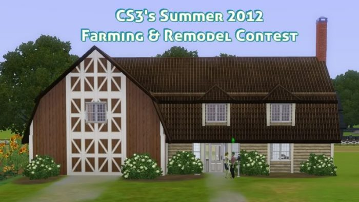 Custom Sims 3 Summer Contest