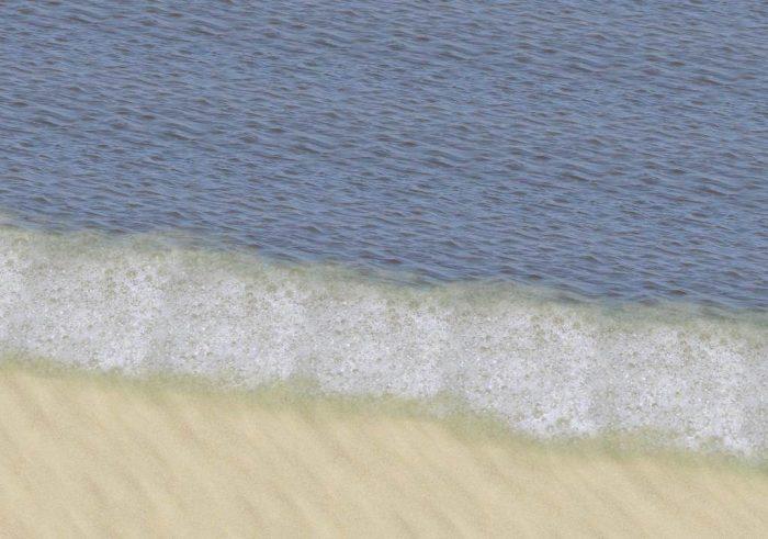 Sea And Sea Foam Ground Covers