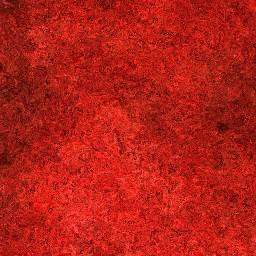Royal Red Marble Flooring