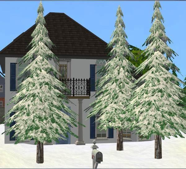Winter Pine Tree - UPDATED