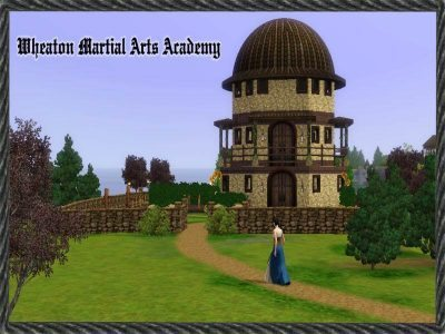 Wheaton Marital Arts Academy